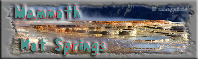 Titelbild der Webseite Mammoth Hot Springs