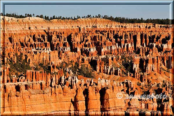 Blick in den Bryce Canyon.