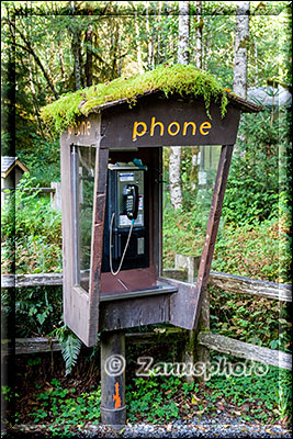Telefonzelle nahe dem Visitor Center im Hoh Rain Forest