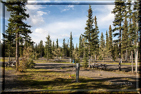 Leerer Campground in Tok