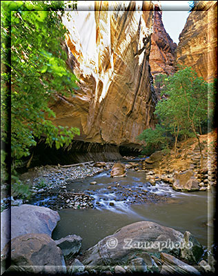 Ansicht des Virgin River am begin der Narrows