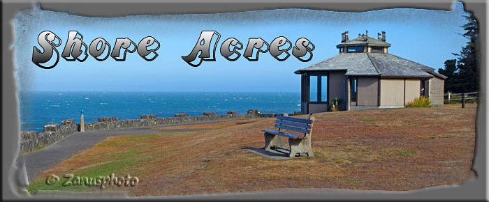 Titelbild der Webseite Shore Acres